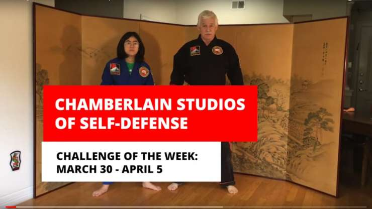 Challenge of the Week: Roundhouse Kicks!