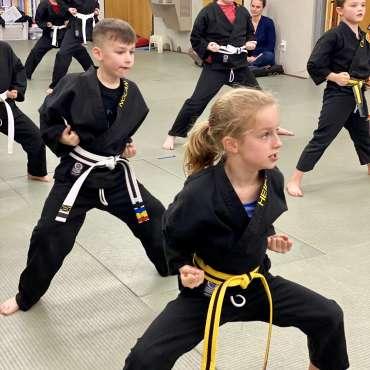 Martial Arts Dallas / Kids Kenpo Karate